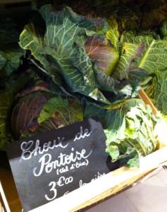 Chou de Pontoise
