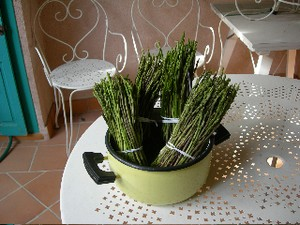 asperges_sauvages